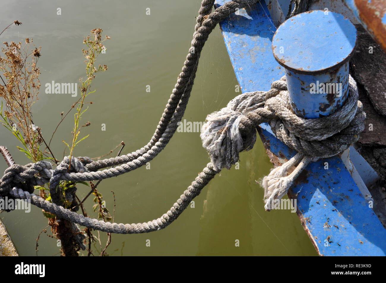 the rope  of an old boat on Kerkini lake - Greece - Stock Image