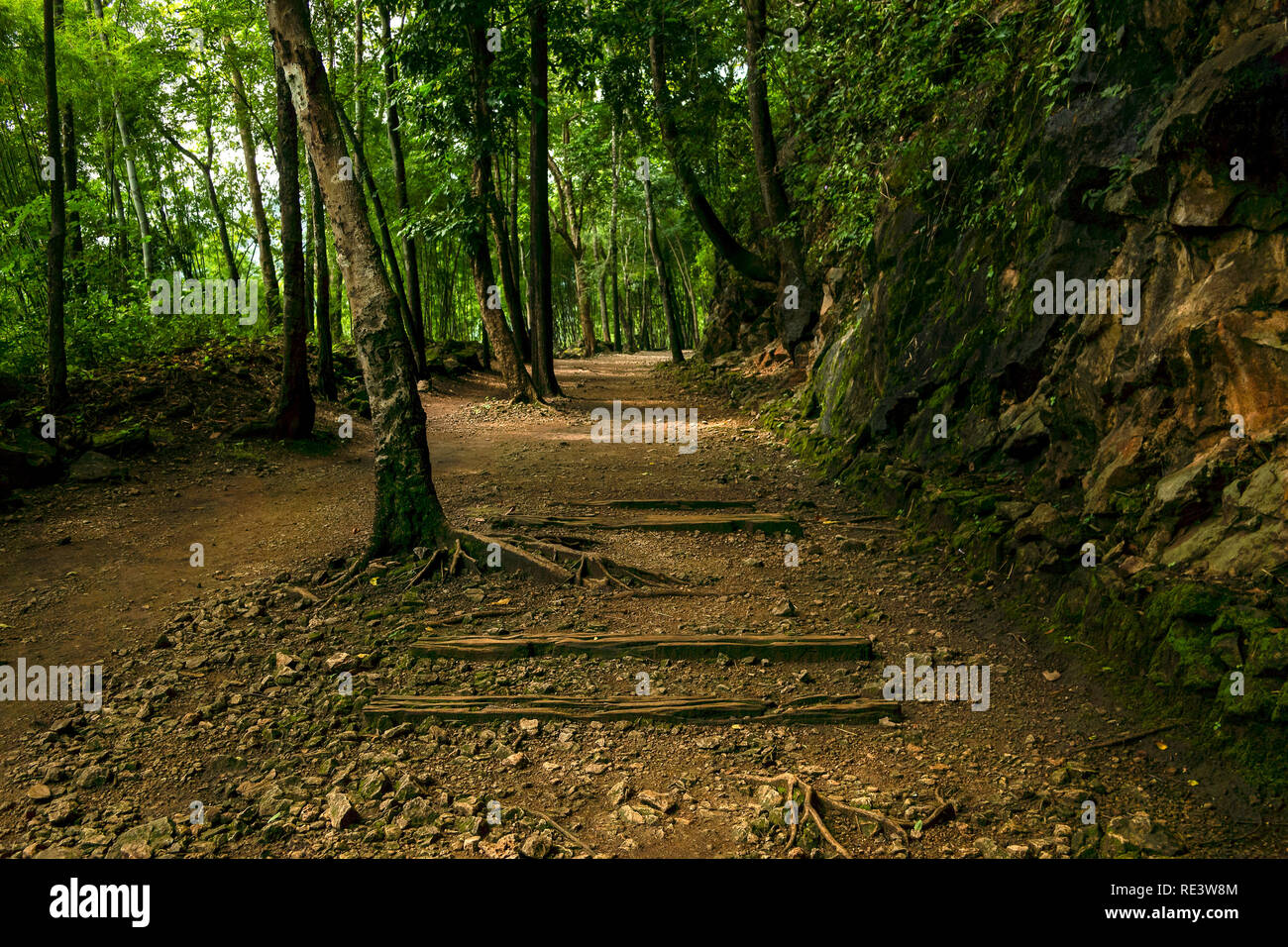 The infamous Hellfire Pass cutting section of the Death Railway, as known as Thai–Burma Railway. Constructed by prisoners of war during World War 2. - Stock Image