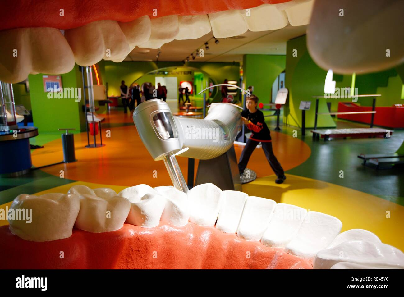 Haus der Natur museum, big teeth and model of a dentist's
