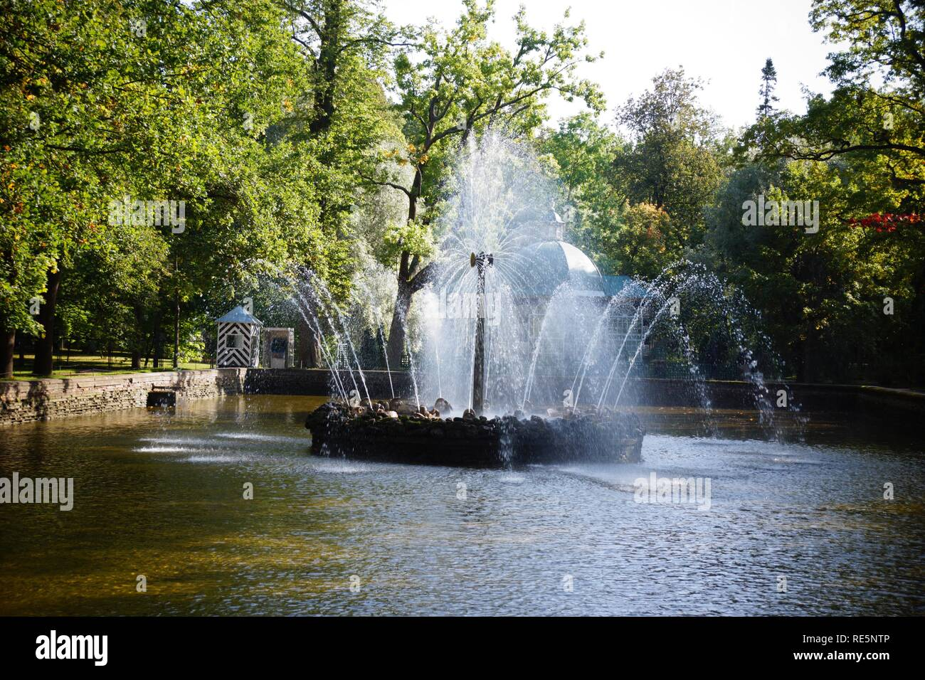 Fountains at Peterhof Palace St Petersburg - Stock Image