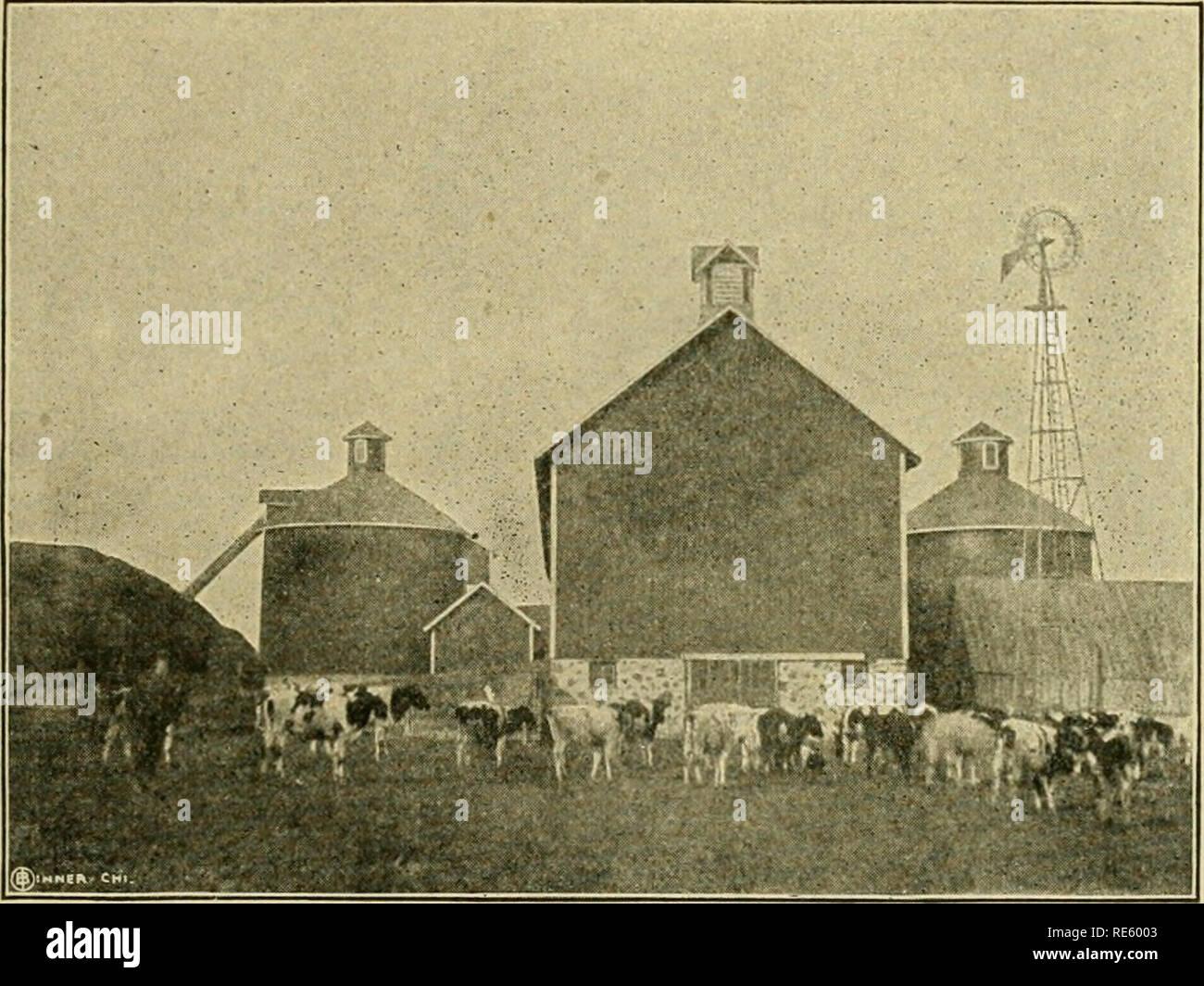 The creamery patron's handbook  Dairying  BUILDING SILOS AND