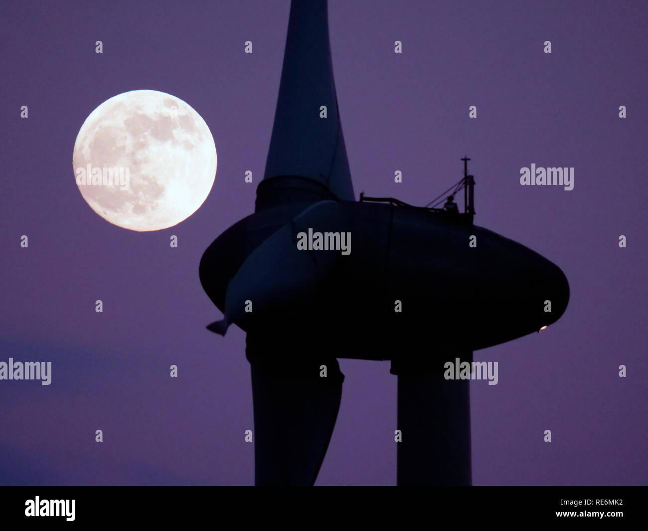 Peak District, UK. 20th Jan, 2019. Full Blood Wolf Super Moon rising over wind turbines at Griffe Grange near Wirksworth, Derbyshire Dales, Peak District, UK Credit: Doug Blane/Alamy Live News Stock Photo