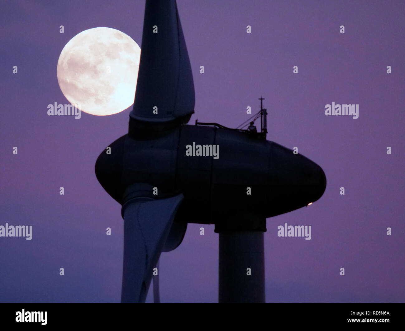 Peak District, UK. 20th Jan, 2019. Full Blood Wolf Super Moon rising over wind turbines at Griffe Grange near Wirksworth, Derbyshire Dales, Peak District, UK Credit: Doug Blane/Alamy Live News Stock Photo