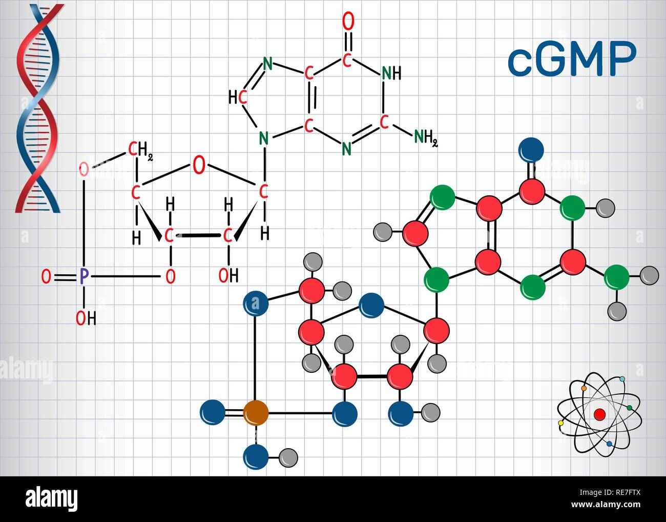Cyclic guanosine monophosphate (cGMP)  molecule. Sheet of paper in a cage. Structural chemical formula and molecule model. Vector illustration - Stock Image
