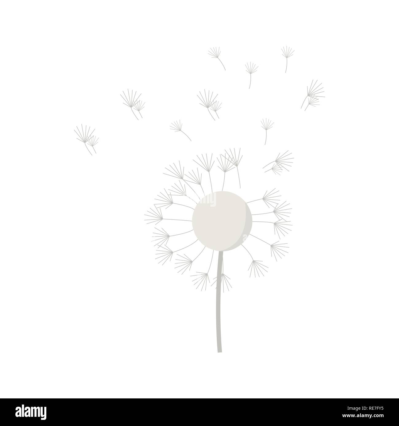 Dandelion On White Background For Graphic And Web Design Modern
