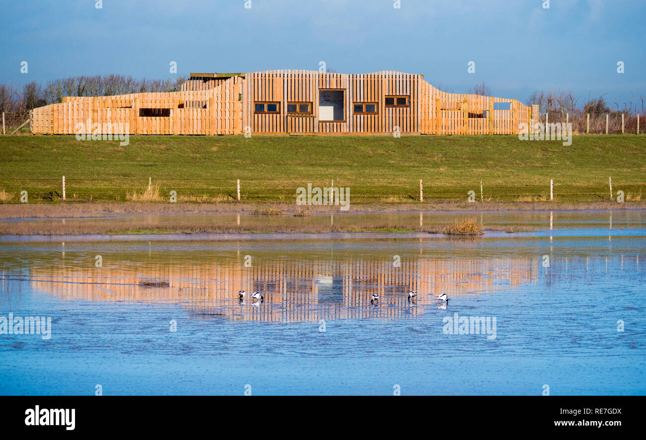 The Polden Hide at Steart Marshes Wildlife and Wetlands Reserve on the River Parrett in Somerset UK - Stock Image