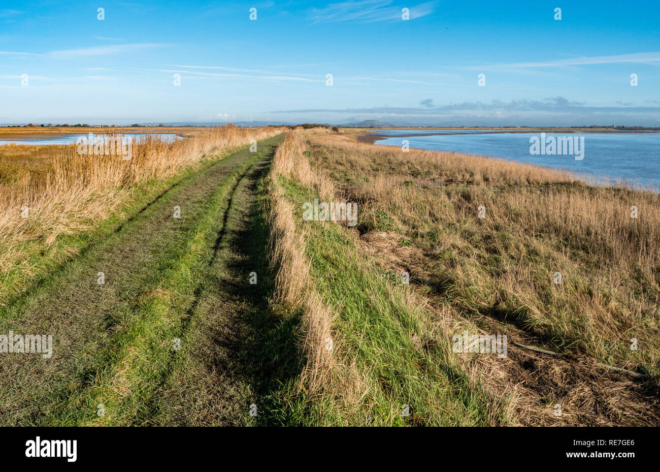 Steart Marshes Nature Reserve and the Parret Estuary to the right of the picture in West Somerset UK - Stock Image