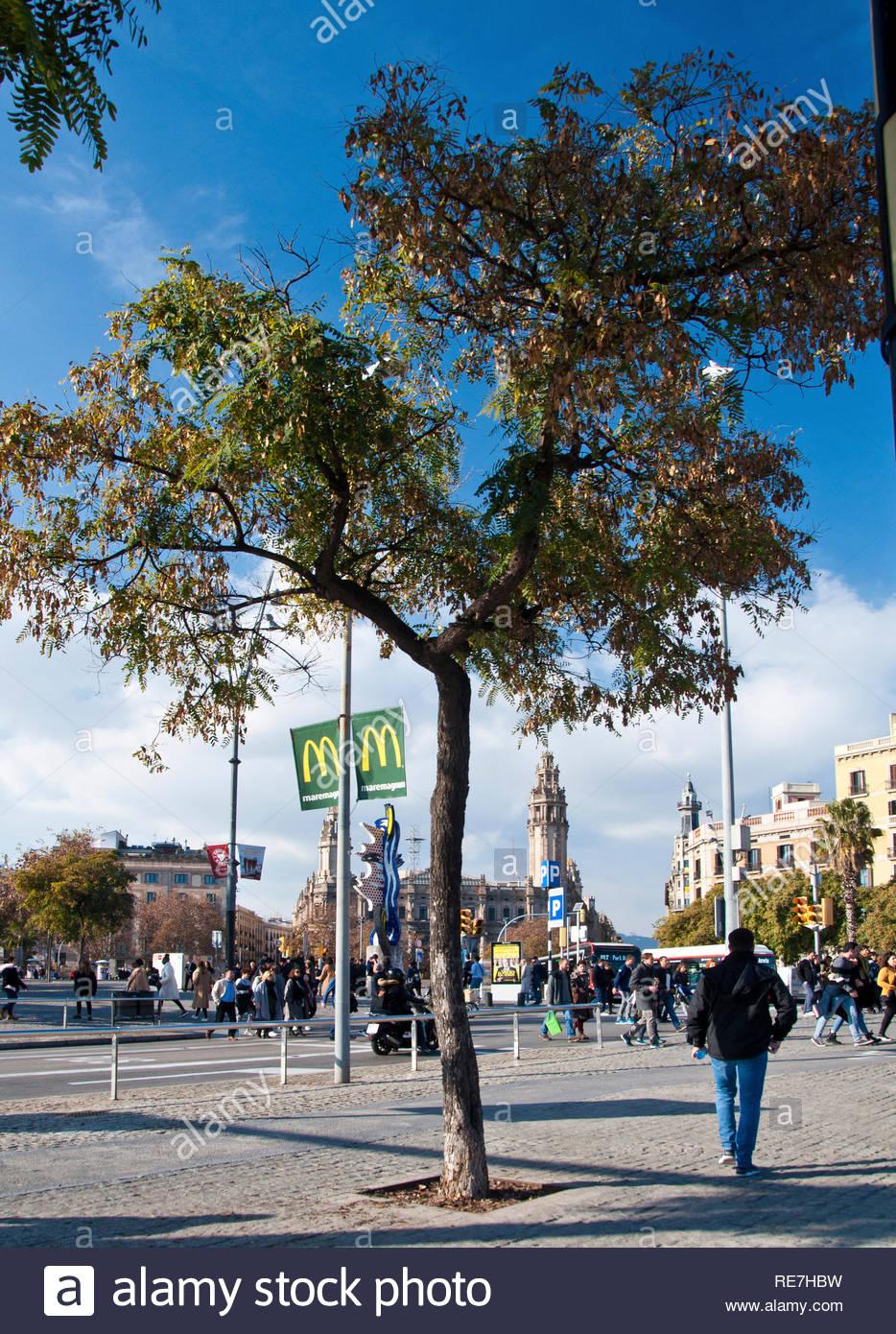 Moll de la Fusta, Turismo de invierno en Barcelona, Ciutat Vella, Spain - Stock Image