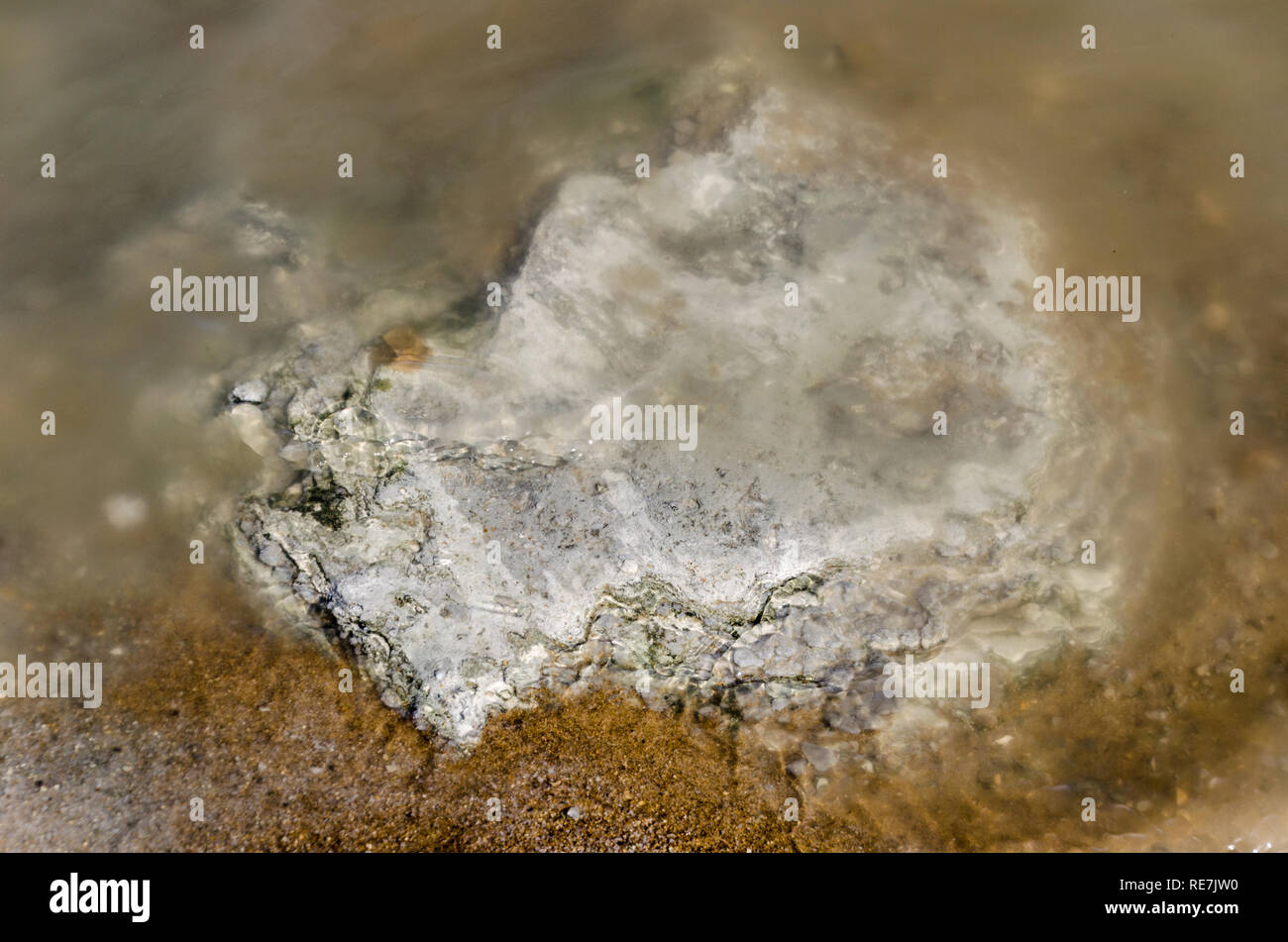 Salt formations at the Dead Sea (West Bank), hypersaline and lowest lake in the world, at -430m below sea level - Stock Image
