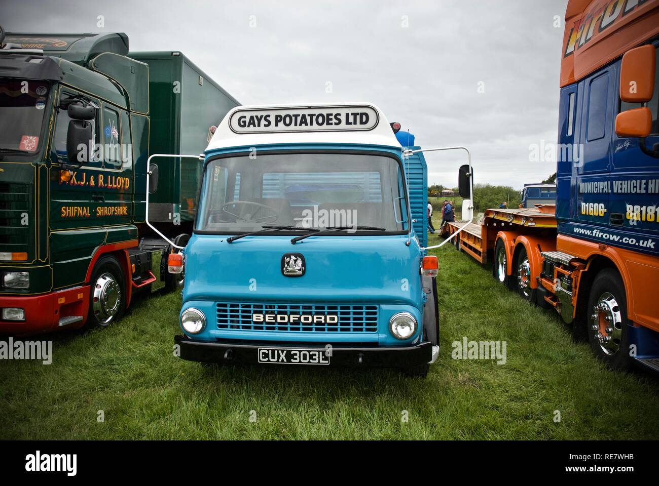 A 1973 Bedford TK truck at the Anglesey Vintage Rally, Anglesey, North Wales, UK, May 2015 - Stock Image