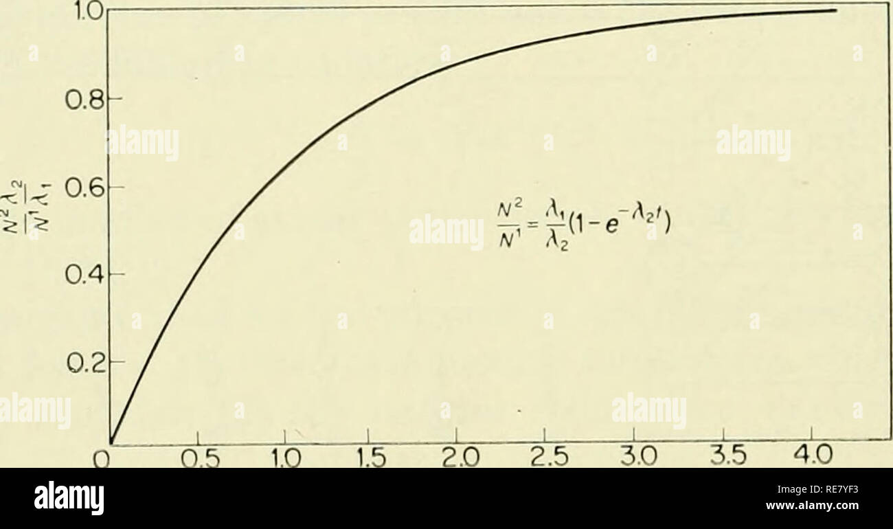 """. The Earth beneath the sea : History. Ocean bottom; Marine geophysics. 818 KOCZY [CHAP. 30 (a) If Ai is much smaller than A2, Nq^ —^ N^ and the equation can be approxi- mated as follows: ir2 = mi^{l-e-'2(), A2 (4) which gives the formula for age as 1 a;'"""" ' ^2A2 (5) where Nq^ is the initial amount of the decaying nuclide and N^ the nuclide produced. This method is applicable when one of the long-lived nuclides, such as uranium or thorium, is incorporated without daughter products in a mineral.. 0.5 1.0 2.0 2.5 3.0 3.5 4.0 Ag/. Fig. 2. Age determination with the aid of the ratio of two  Stock Photo"""