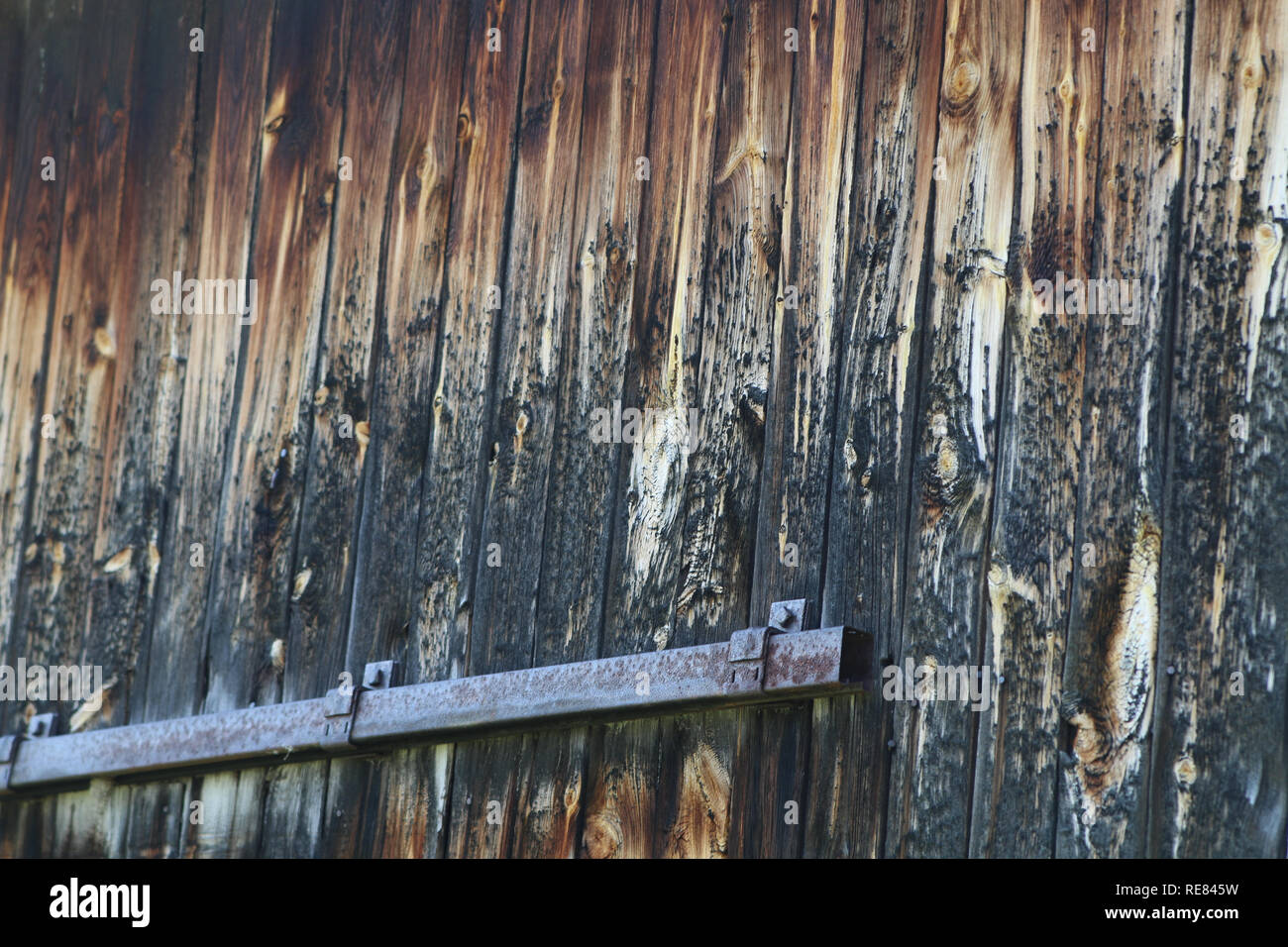 Old barn wood with metal ferring - Stock Image
