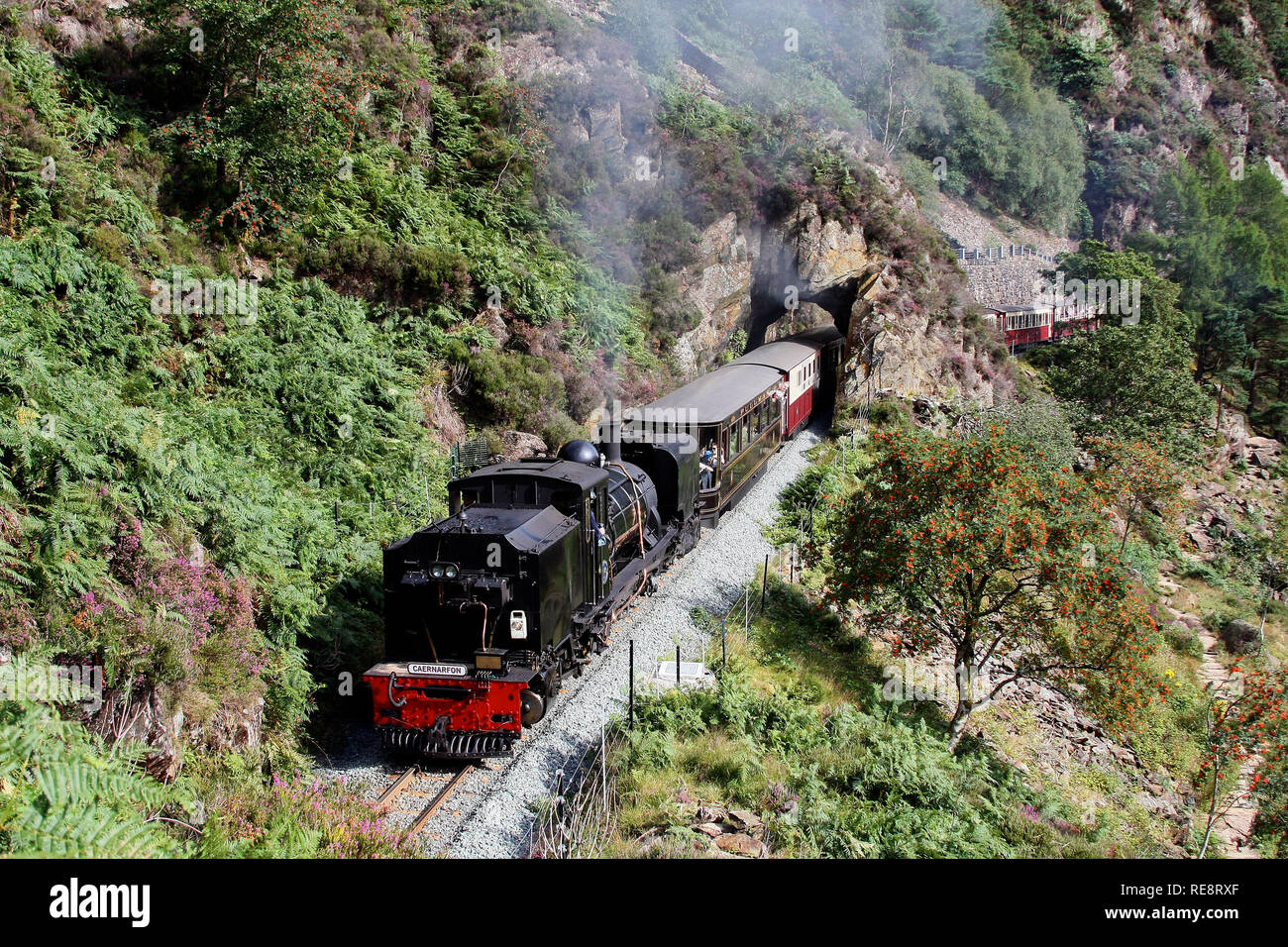 No 143 heads the Aberglaslyn pass on the welsh Highland railway. - Stock Image