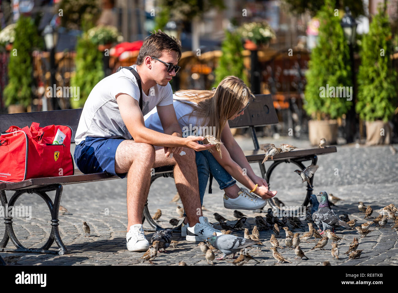 Warsaw, Poland - August 23, 2018: Old town market square with historic cobblestone street during summer day closeup of couple feeding birds sitting on - Stock Image