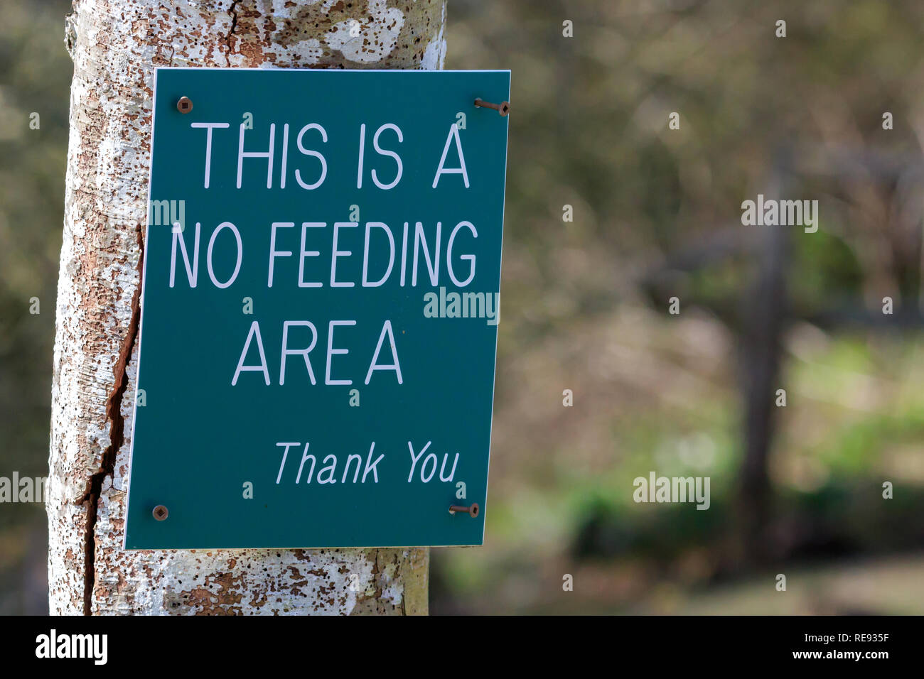 Green No Feeding Area sign - Stock Image