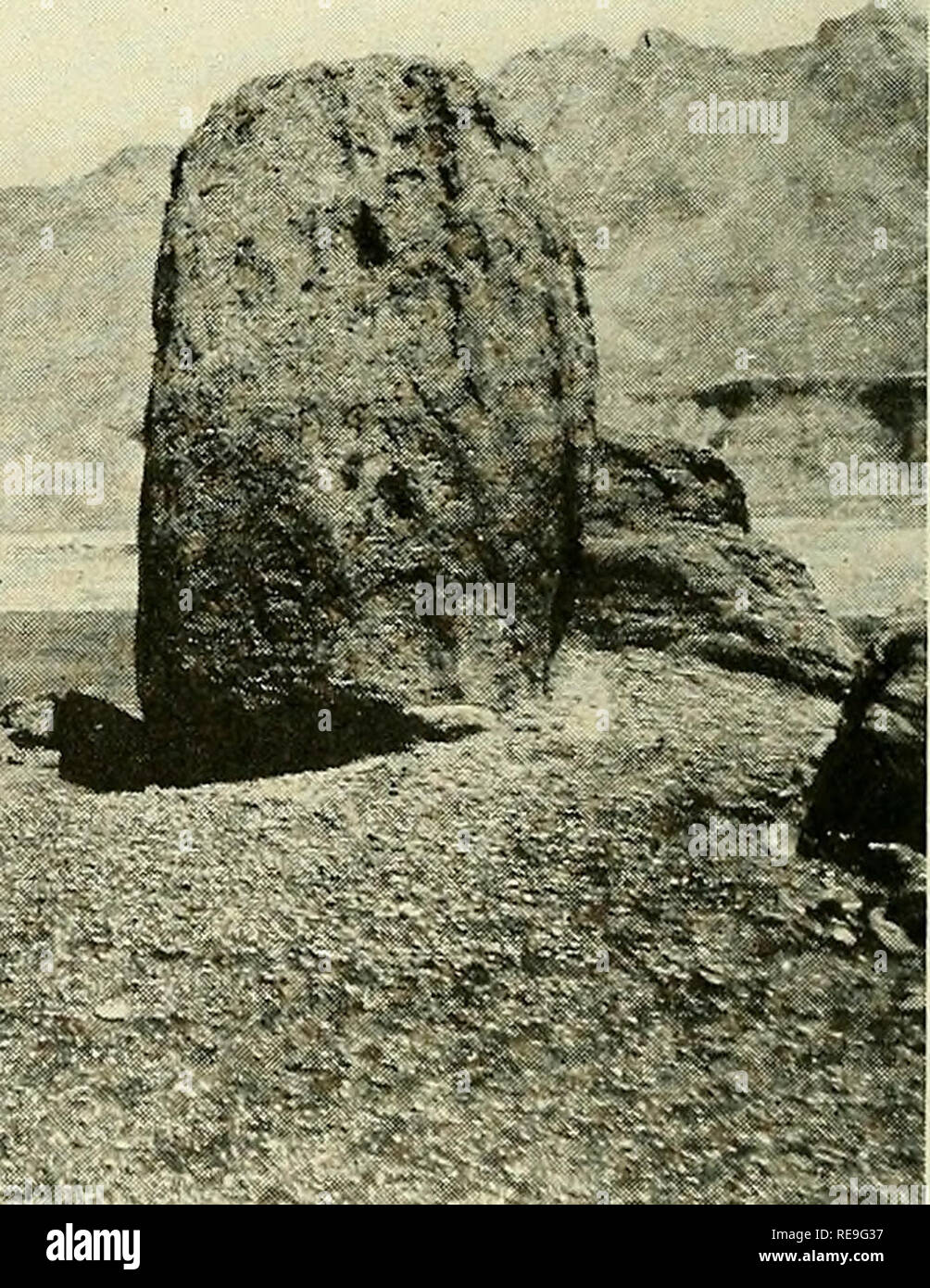 . Contributions to the geography of the United States, 1923-1924. Geology; Mines and mineral resources. B. BLOCK OF SHINARUMP CONGLOMERATE WITH VERTICAL BEDDING PLANES. Rests on subconical hillock of Moenkopi formation veneered by gravel resulting from the disintegration of the block. The slight hollow on the left of the block is due to incomplete protection from drip by the gravel. Marble Canyon is concealed in the light-colored area (Kaibab limestone) in the middle ground. Echo Cliffs with fret of Shinarump cliffs at the base rise in the background.. Please note that these images are extract - Stock Image