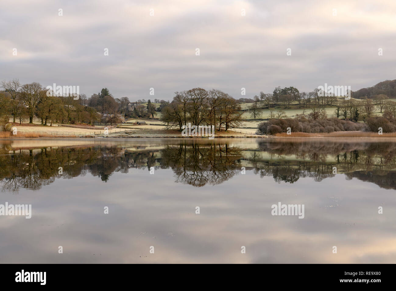 Esthwaite Water reflections on a cold, frosty January morning - Stock Image