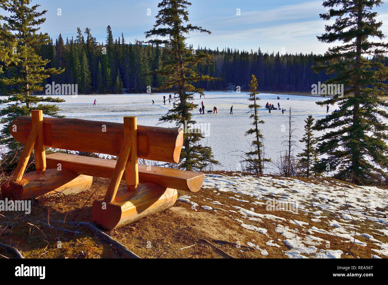 A winter landscape of an empty memorial bench on a viewpoint overlooking Maxwell Lake in Hinton Alberta Canada with people enjoying an outdoor ice ska - Stock Image