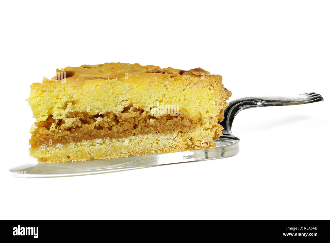 cake lifter with wedge of filled cake from the Dutch island of Texel called Razende Bol isolated on white background - Stock Image