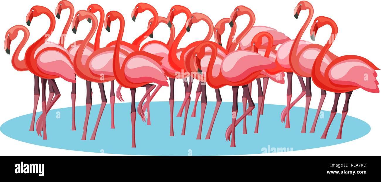 Exotic pink purple flamingo birds crowd group gathering flamboyance - Stock Vector