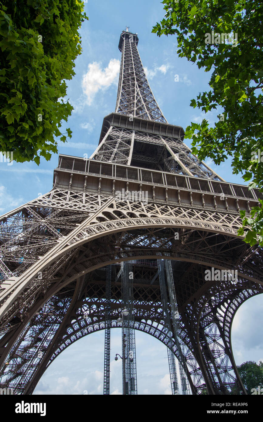 Towering Above - Low view of the Eiffel Tower between trees. Paris, France - Stock Image
