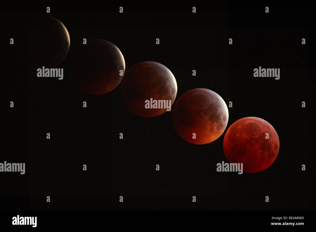 London, UK. 21st January, 2019. Lunar Eclipse, taken from Bexley, South East London. This is a five image stacked composite of images taken between 4.30am and approximately 5.12am on the 21st January 2019. Showing the full eclipse on the final image.  Credit: Steve Hickey/Alamy Live Newsmoon dark sky Credit: Steve Hickey/Alamy Live News Stock Photo