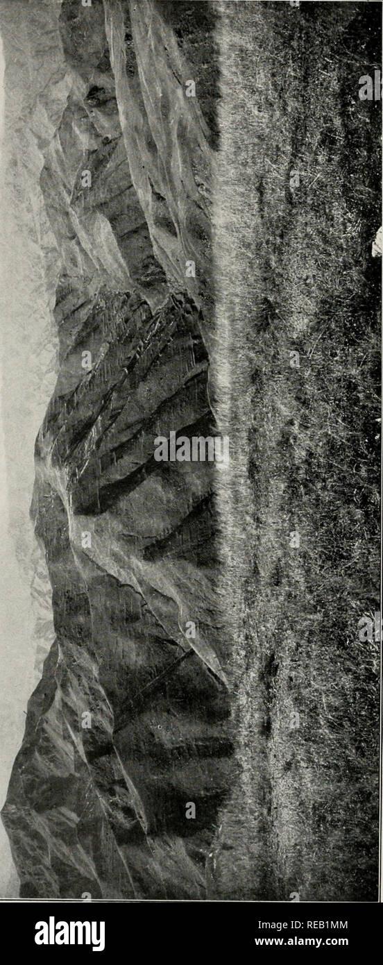 V W X Y Z Stock Photos & V W X Y Z Stock Images - Page 4 - Alamy