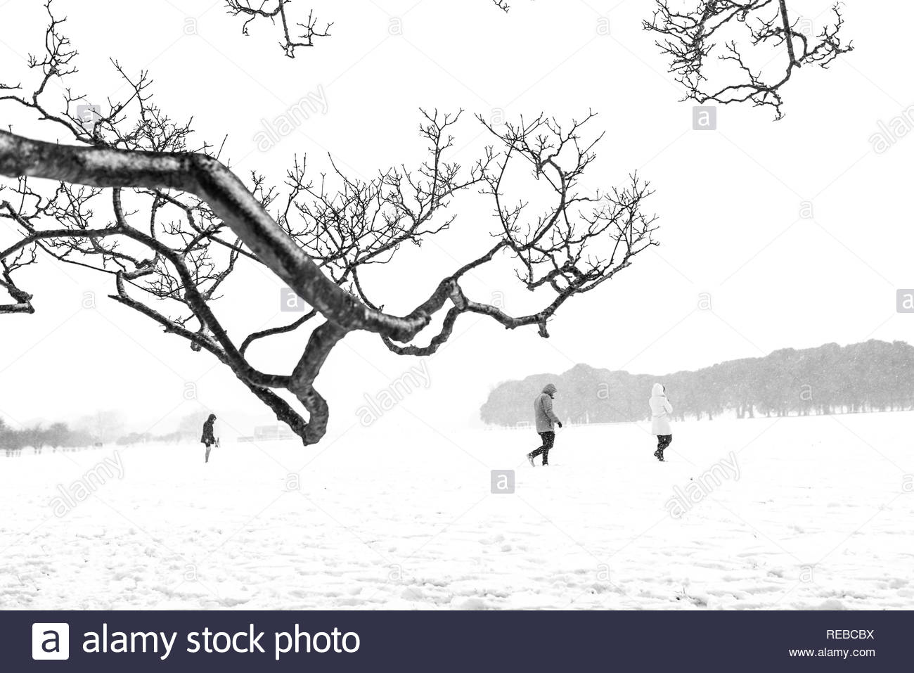 Three people walking on the snow and feeling the nature. Black & white picture. - Stock Image