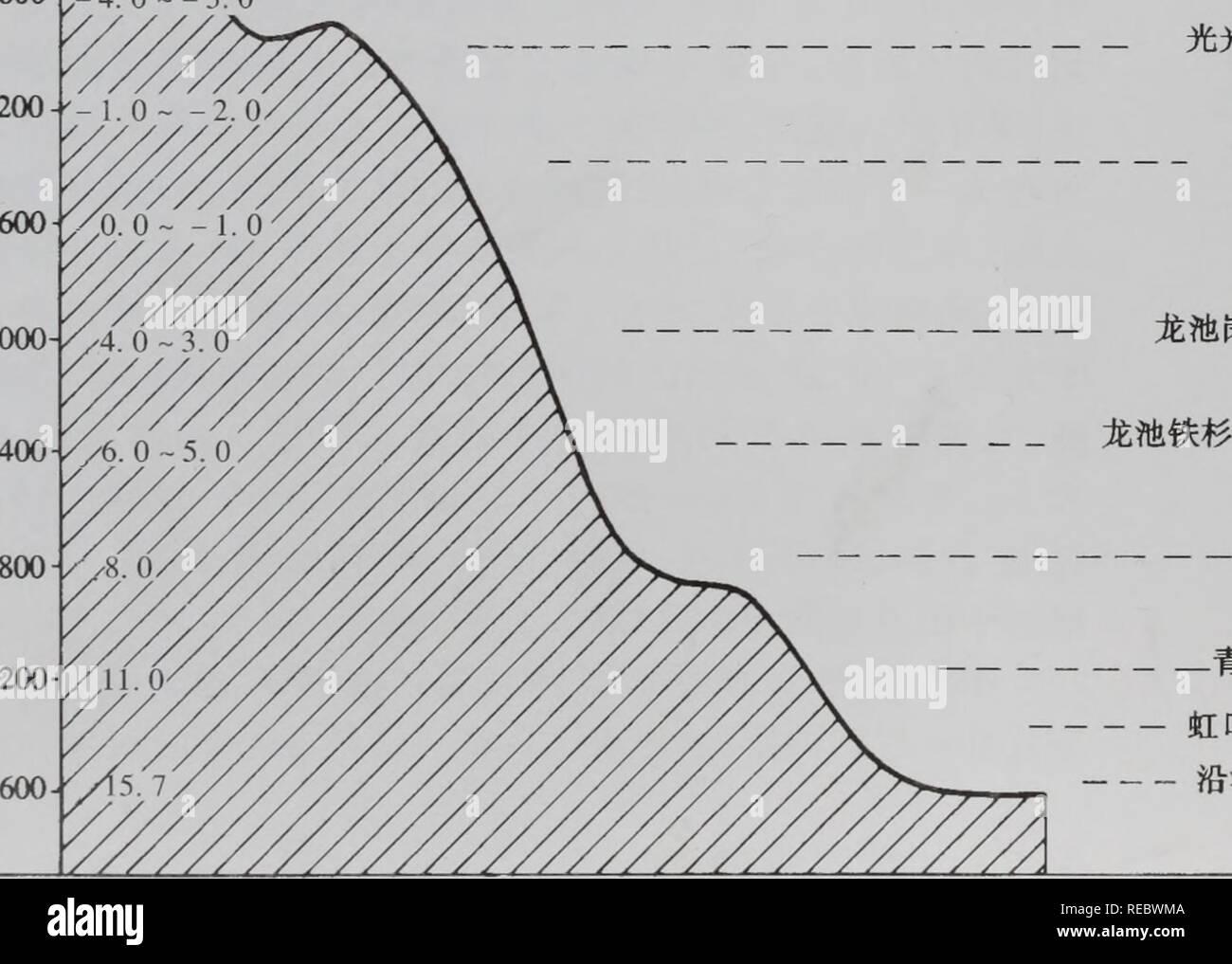 シャネル 時計 激安 / 広島 時計 激安メンズ