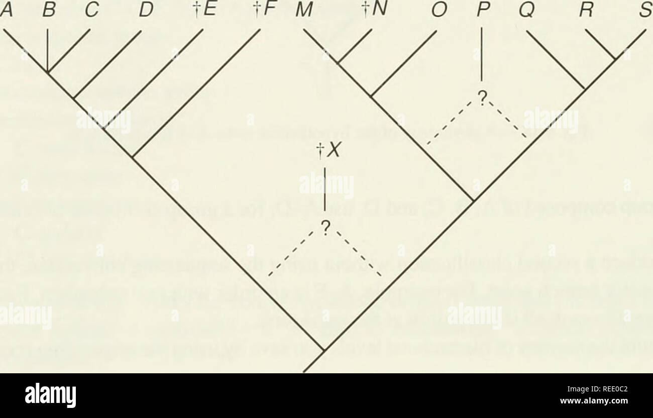 Diagram 1972 Chevy C10 Wiring Diagram Mikuni Carb Parts Diagram