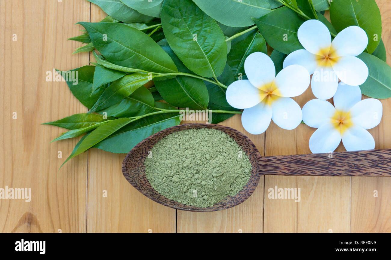 Henna Plant Stock Photos Henna Plant Stock Images Alamy