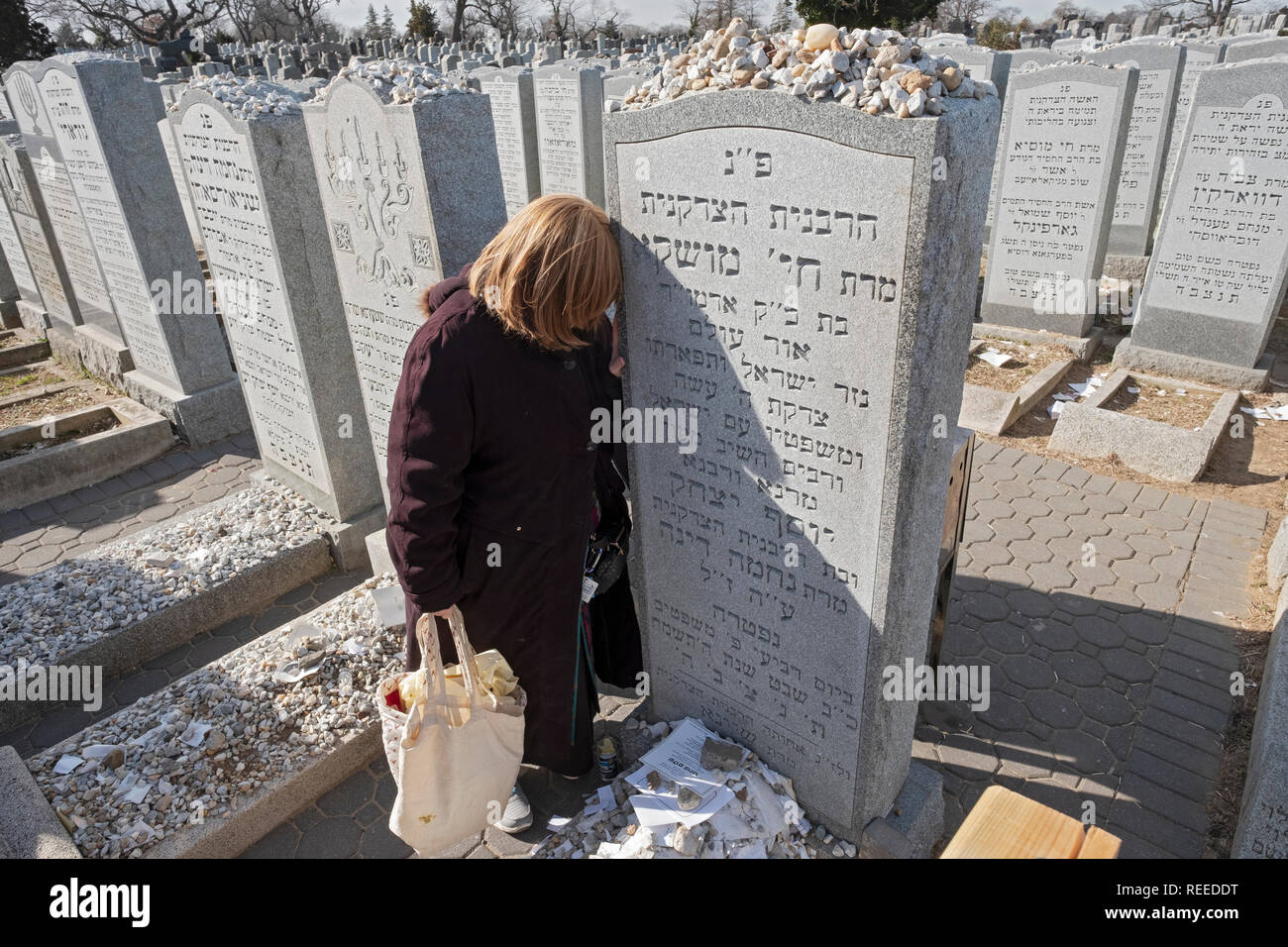An orthodox Jewish woman prays at the headstone of Chaya Mushka Schneerson, the wife of the Lubavitcher Rebbe. In Cambria Heights, Queens, New York - Stock Image