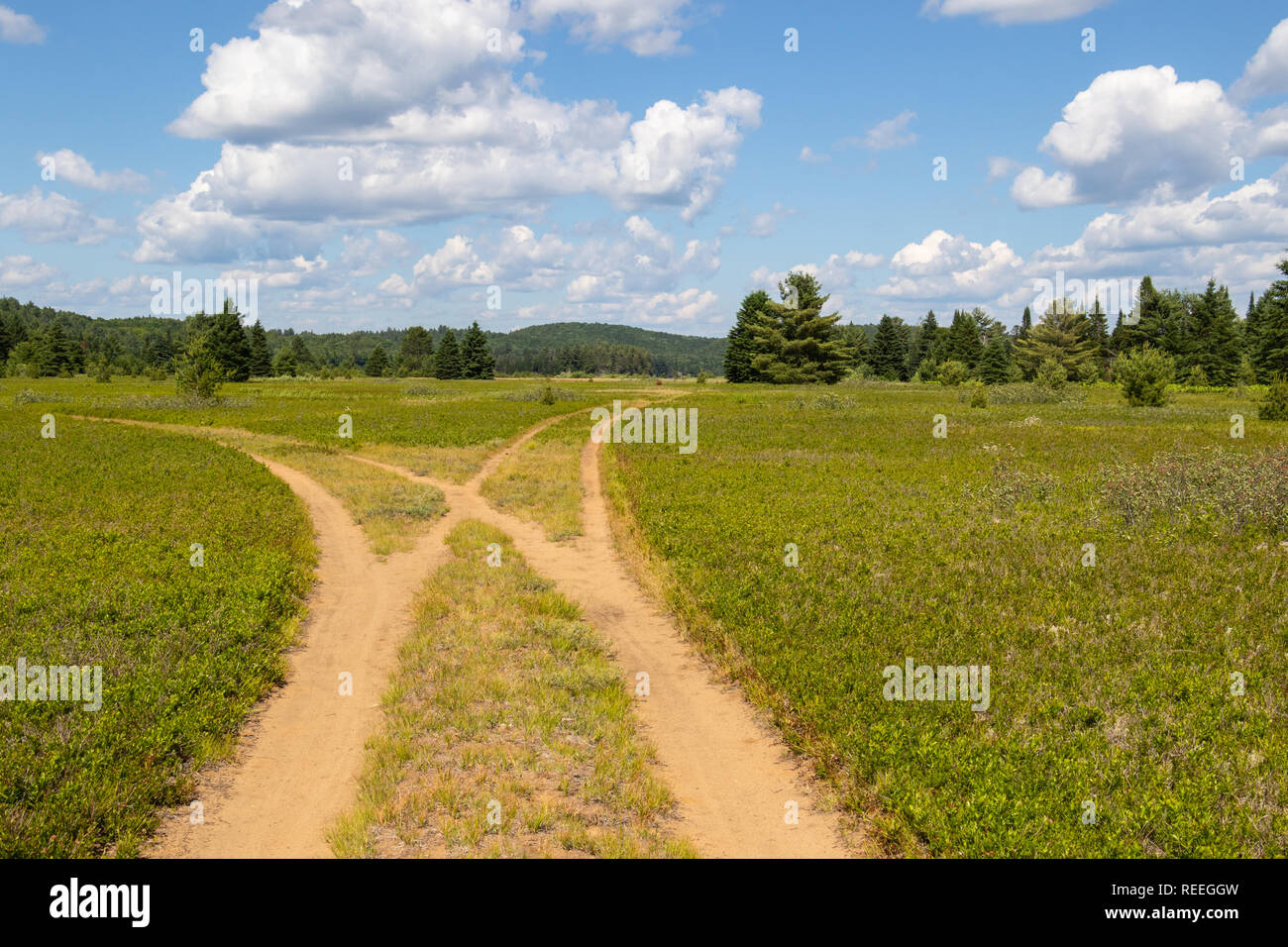 City Market Moab >> Paths Crossing Stock Photos & Paths Crossing Stock Images ...