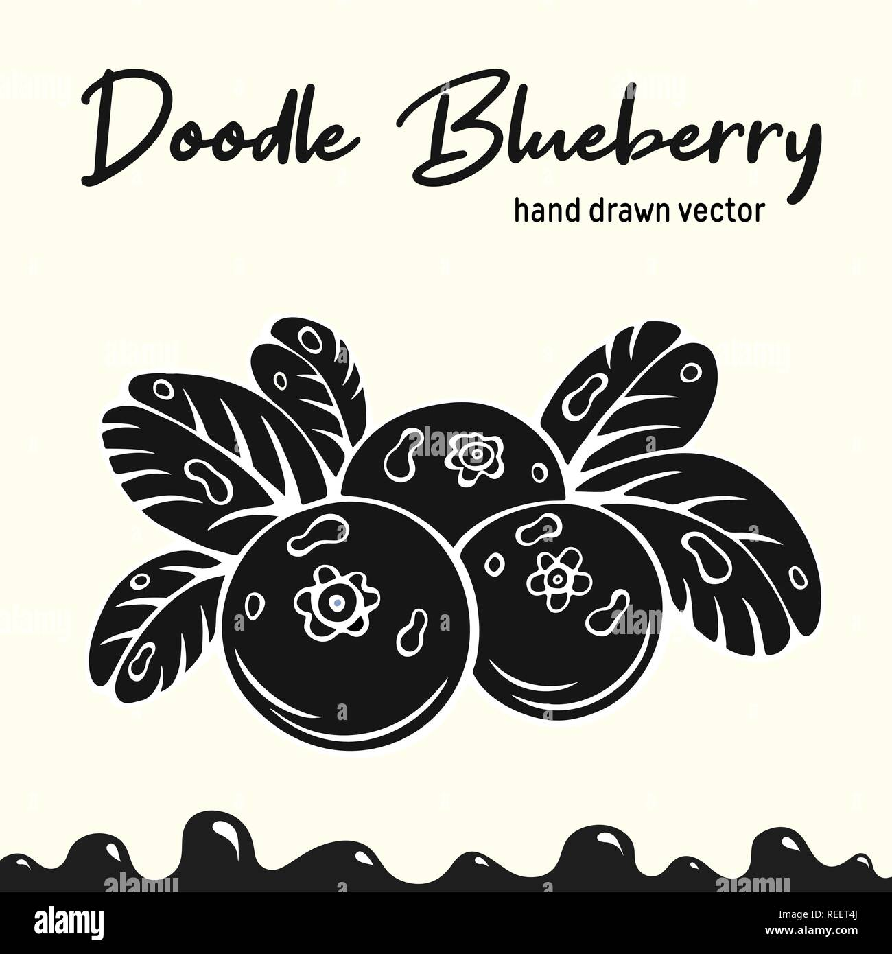 Blueberry vector illustration, berries images. Doodle Blueberry silhouette vector illustration. Blueberry berries images for icon, menu, package design. Black color vector berries images of blueberry. - Stock Vector
