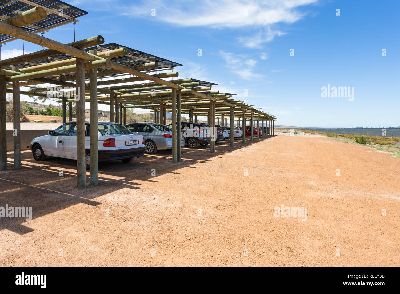 Solar panels, photovoltaic, used as car port or parking bay roof coverings to convert the sun into usable electricity as green energy in South Africa - Stock Image