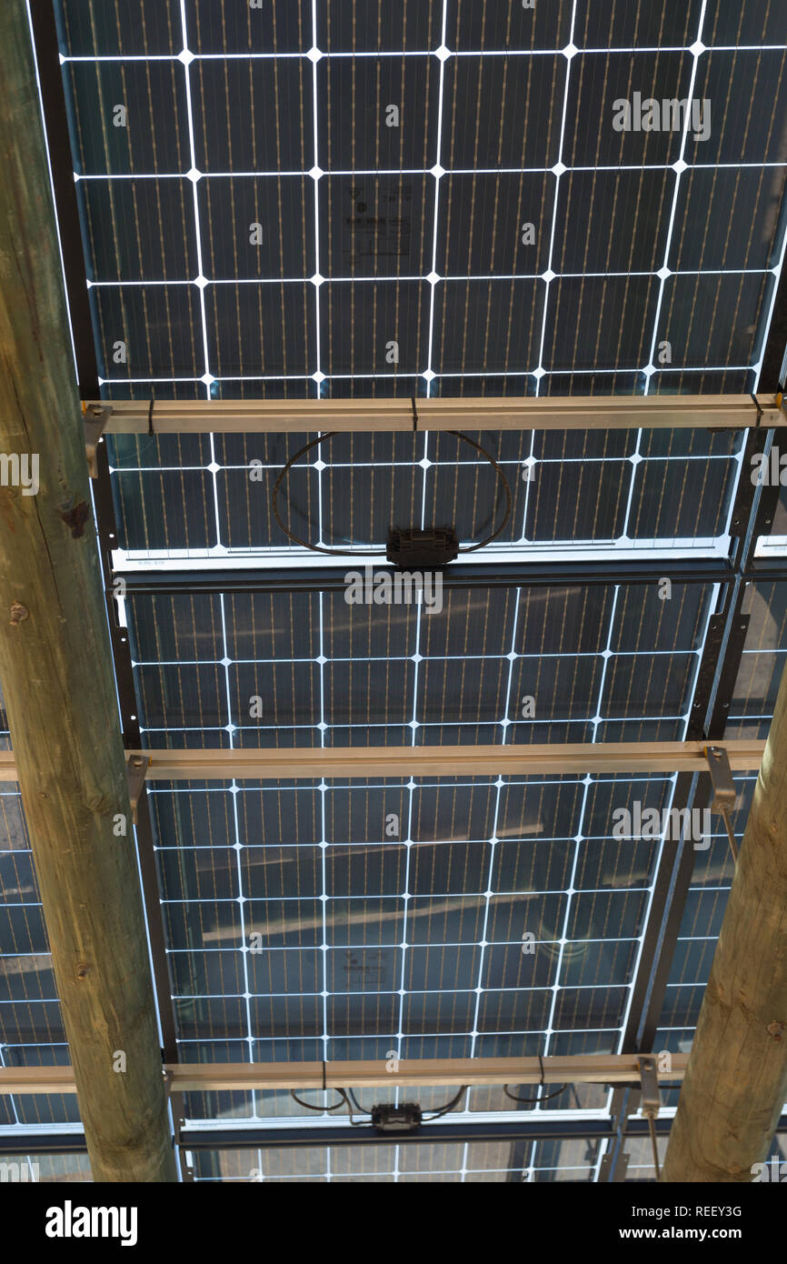 Solar energy panel, photovoltaic, used as roof over parking bay in close up and detailed representation alternative energy efficiency in South Africa - Stock Image