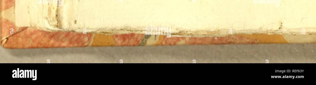 . Compendio de observaçoens, : que fórmaõ o plano da viagem politica, e filosofica, que se deve fazer dentra da patria. Dedicado a Sua Alteza Real o Serenissimo Principe do Brasil. Natural history; Mines and mineral resources; Silk industry; Imprint 1783. t>'- i oz Parte II. Cap. XW. bios carnofos , caitilagineos, ou of- feos ; a íituaçaõ dos Dentes fe cílaS nas Maxillas, fe no Paladar, fe na Lira* goa. Quaes os feus Olhos, Pupilla * membrana Niétitante , (a) e Cir- ros. (£) Qualhc o numero das Guel* ras, e o medo particular da fua admi- rável conílrucçaõ. Çe) Tronco. II. Que figura tem o T - Stock Image