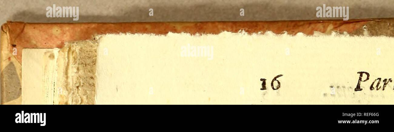 . Compendio de observaçoens, : que fórmaõ o plano da viagem politica, e filosofica, que se deve fazer dentra da patria. Dedicado a Sua Alteza Real o Serenissimo Principe do Brasil. Natural history; Mines and mineral resources; Silk industry; Imprint 1783. i6 . Fartei, Cap. III. CAPITULO IV. Das riquezas , e praduãos de Por tu* gak TEmos huma ideia vaga das Minas , e produtos de Portugal , que nos miniÃ-Ã-ra a hiftoriá , e algumas deÃ-cuber- tas cazuaes. Onoflò paiz he reputado pcius mais abundantes da Europa , com quem a natureza liberalizou muitos the- zouros. Nao fem motivo penfaõ alg - Stock Image