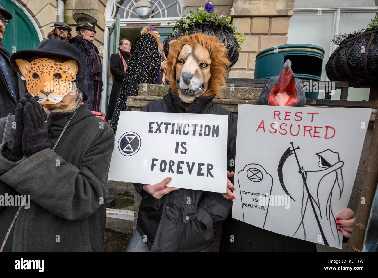 Glastonbury, UK. 12th Jan 2019. Extinction Rebellion Funeral March through town centre. Credit: Guy Corbishley/Alamy Live News Stock Photo