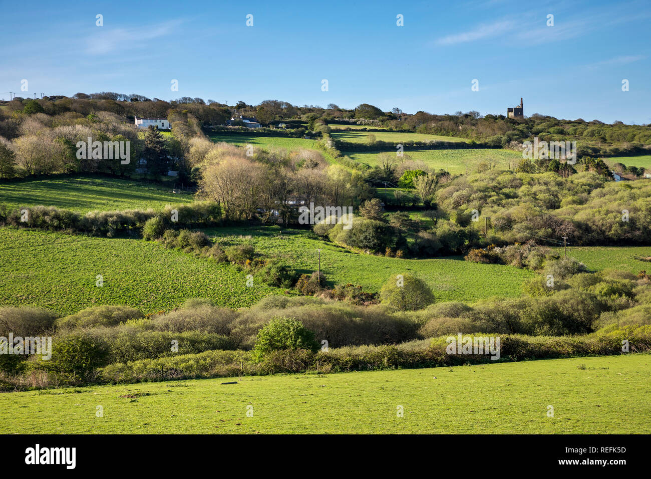 Godolphin Hill; Engine House and Hedgerows; West Cornwall; UK - Stock Image