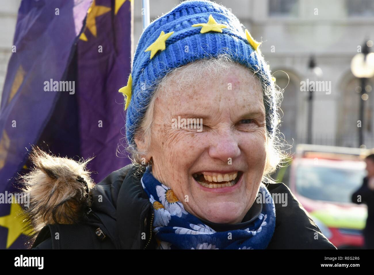 Anti Brexit Protest.Remainers continued their protests on the day that Theresa May revealed her Brexit Plan B.Houses of Parliament,Westminster,London.UK - Stock Image