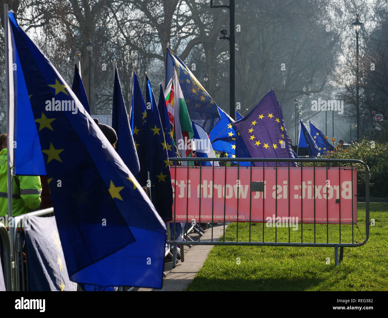 London, UK. 21th January, 2019. European Union flags in support of remaining inside EU around the Houses of Parliament today. Credit: Joe Kuis / Alamy Live News - Stock Image