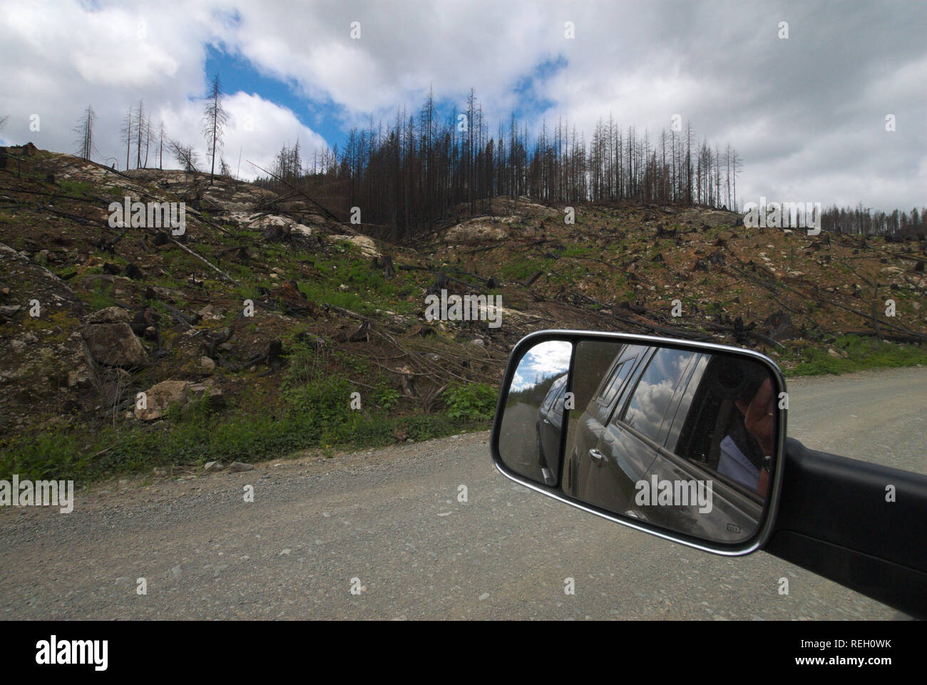 Aftermath of a forest fire in Mission, British Columbia, Canada - Stock Image