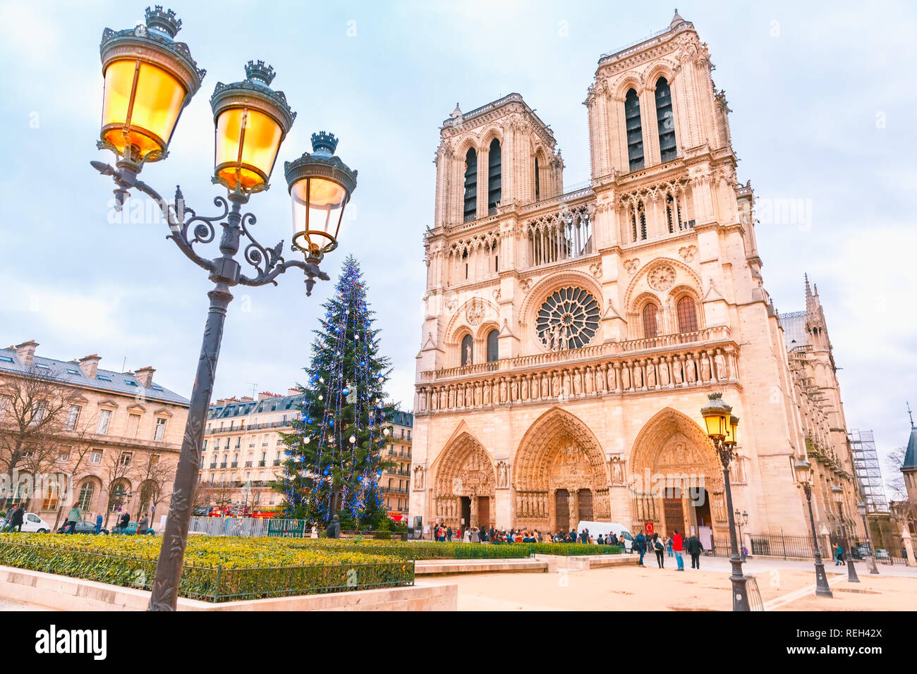 Cathedral of Notre Dame de Paris at Christmas - Stock Image