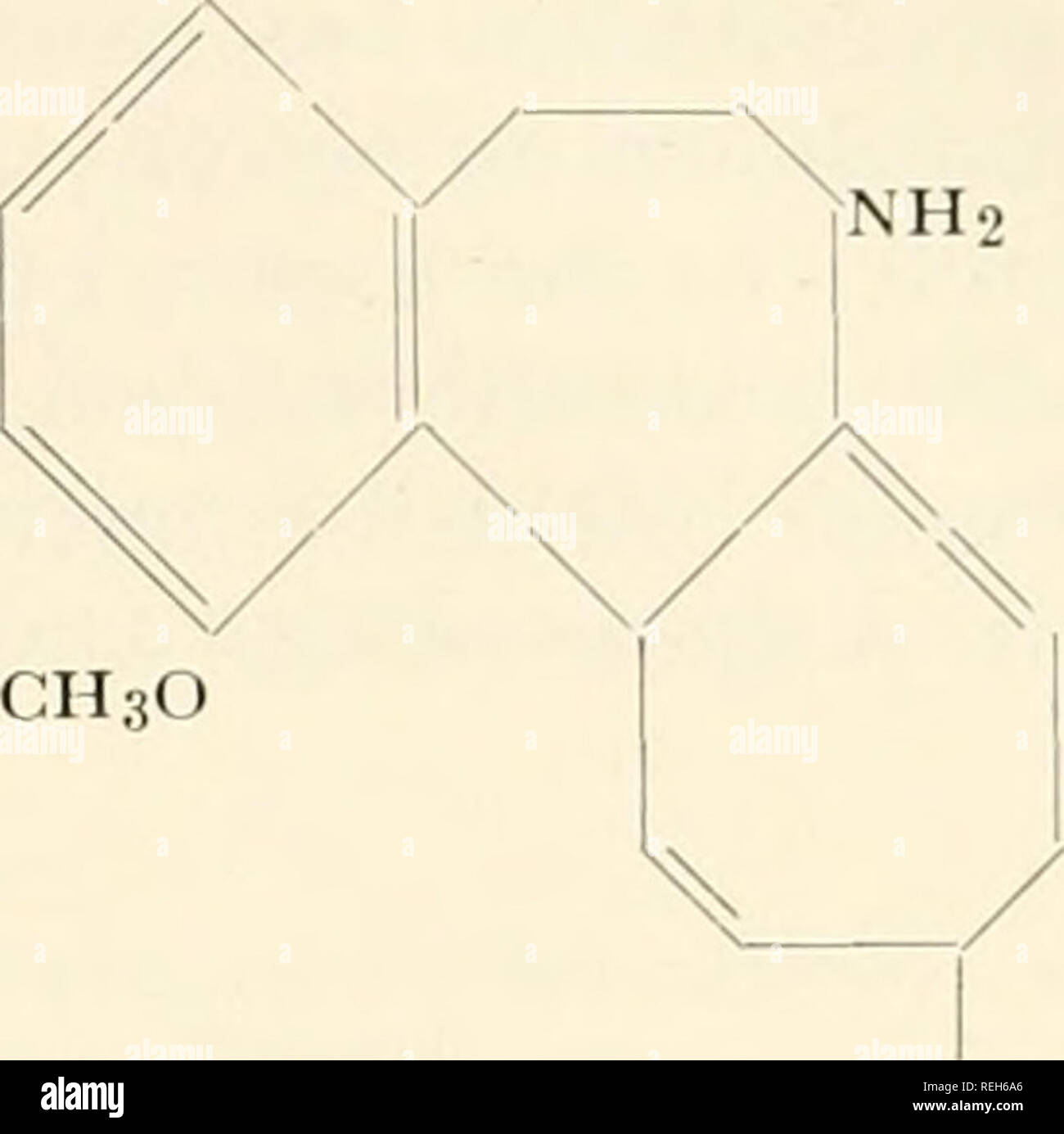 """. Colchicine in agriculture, medicine, biology, and chemistry. Colchicine; Colchicine. NH.C0CH3 CH30 CH30. CH30 0CH3 (VIII) (IX) = 0 0CH3 methylcolchicinic iiictliyl cllier has been demonstrated to be one of the most effective derivatives in arresting mitoses in the stomach epithelium of mice.""""- ^-- -^^ Substitutions in ring C are the most important, for they yield substances with a greater antimitotic activity than colchicine.""""^- '^^ These are derivatives of colchicamide (X). (This abbreviated spell- ing is to be preferred to colchicine amide or colchiceinamide, which are to be foun - Stock Image"""
