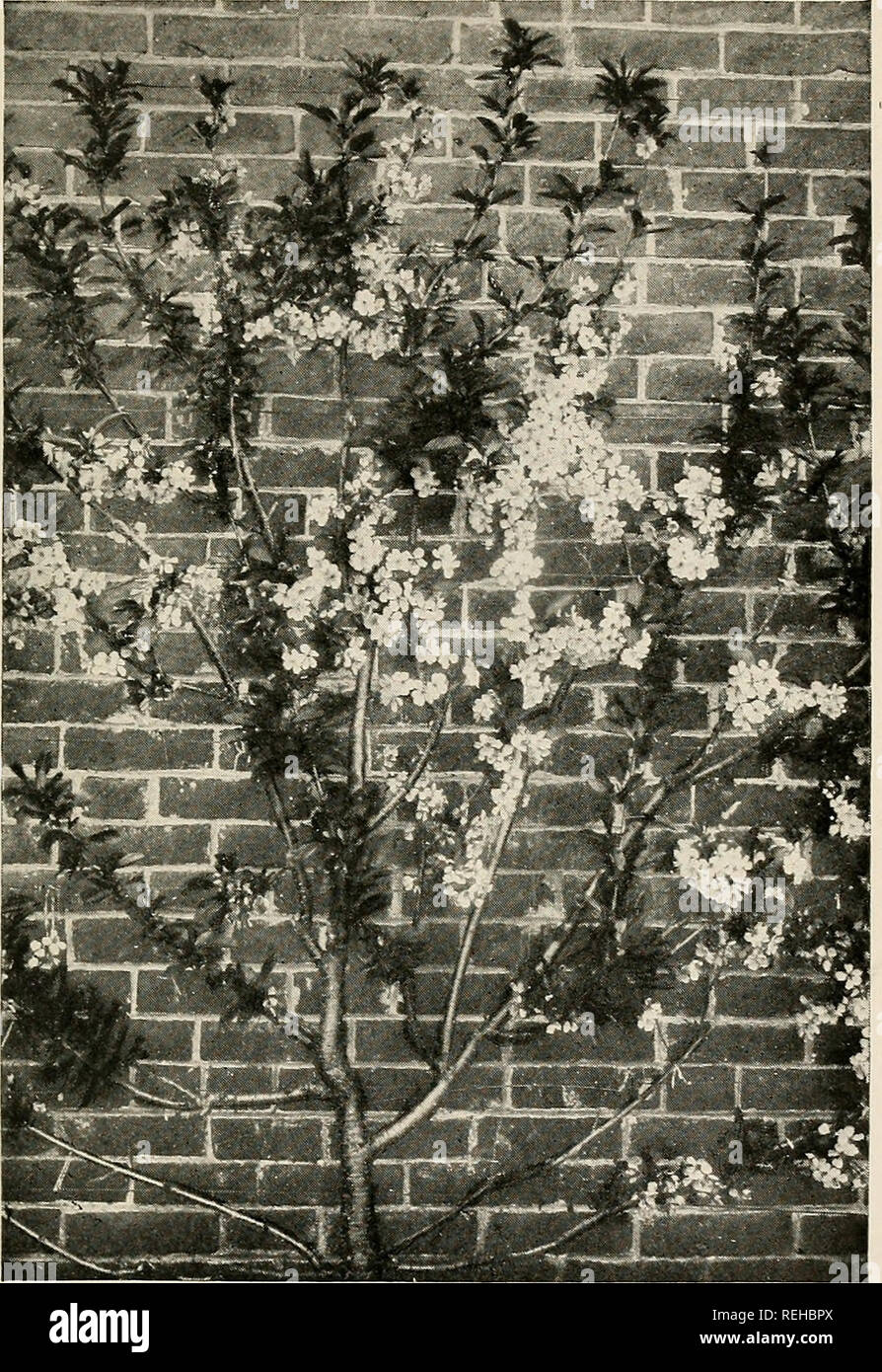 Hidden massage cam sex