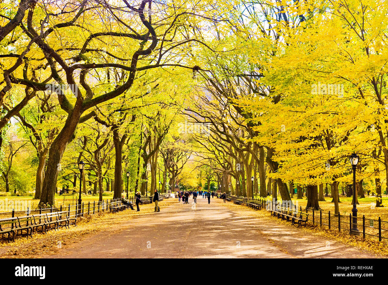 The Mall Central Park Autumn New York City - Stock Image
