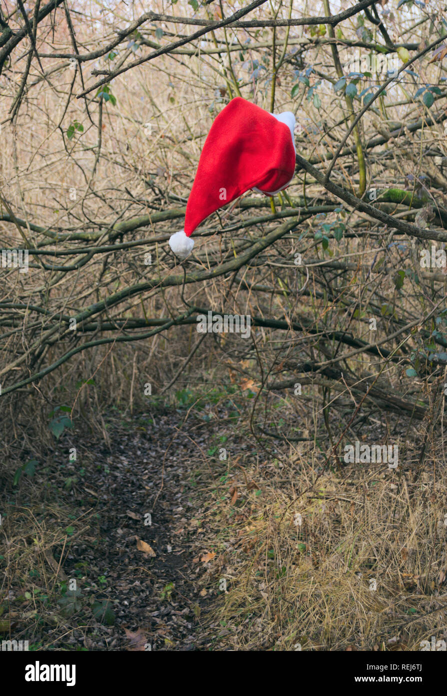 Santa Claus hat hanging on a branch Stock Photo