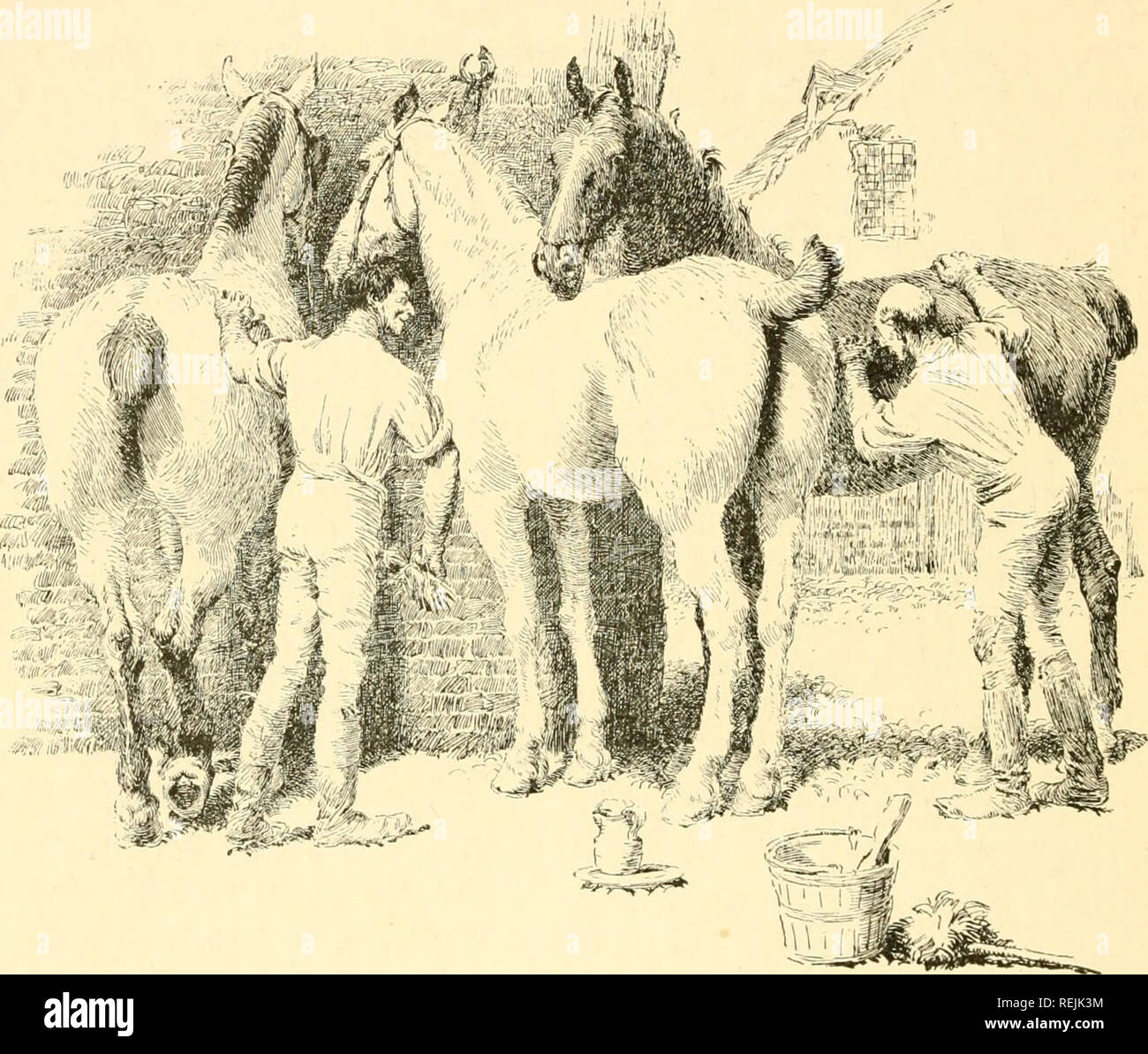 . Coaching days & ways. Horses; Coaching (Transportation) -- England; England -- Social life and customs. 226 COACHING DAYS AND COACHING WAYS there has been some history. For here, to begin with, in 1581, Elizabeth went on board Drake's ship, the Golden Hind, in which that greatest of Enghsh seamen had circumnavigated the globe. On board the Golden Hind the queen dined, and after dinner knighted the captain.. The Toilet. I read that the ship was afterwards laid up in a yard here, and converted into a sort of dining-house for London visitors ; in which case all I can say is that I hope that - Stock Image