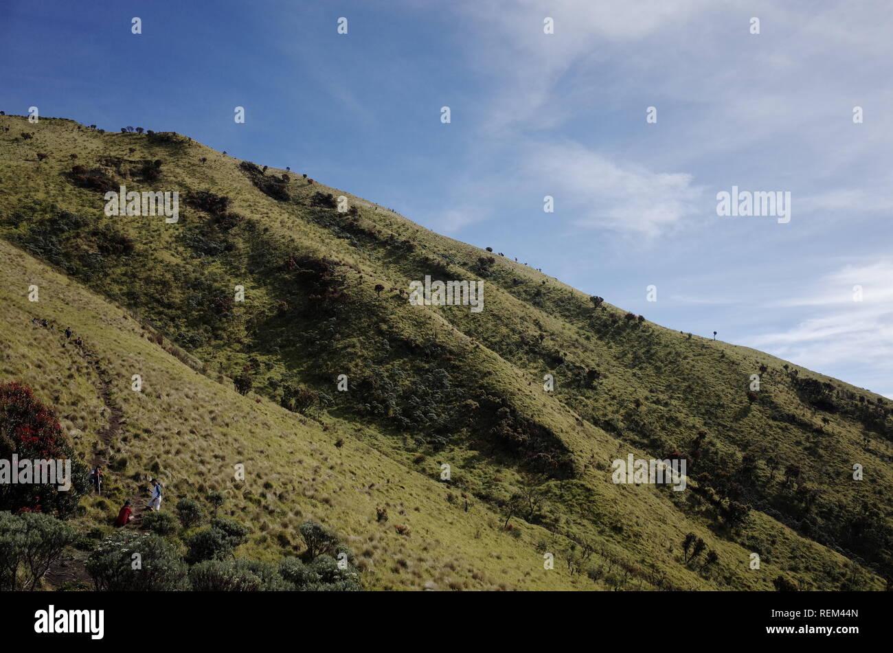 Mount Merbabu Scenary - Stock Image